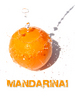 Mandarinai, mandarinai, Vilnius